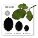 Rose Leaves set of 3 - Jem Cutters