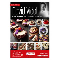 1st payment 3 days Hands on Master Class 20, 21 & 22/12/19 with David Vidal